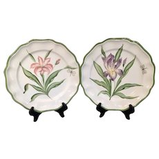 Pair of Vietri Fiori Belli Botanical Plates