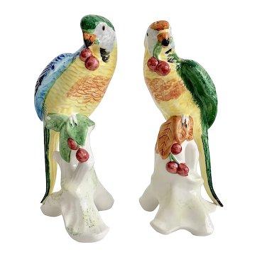 Pair of Chelsea House Parrots Birds