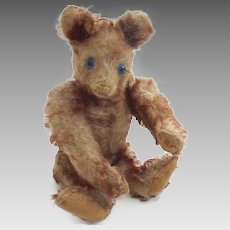 RARE Antique STEIFF 1928-30 PETSY Cinnamon Tipped Mohair BLUE Eyed TEDDY Bear w Underscore ff Button GERMANY