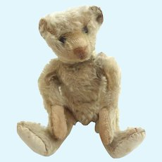 RARE Antique 25cm STEIFF Blank Button 1905 White Mohair Teddy BEAR GERMANY