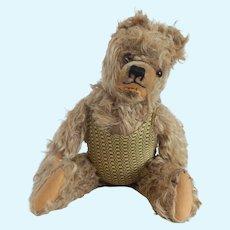 Well Loved Teddy Bear