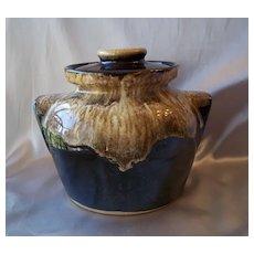 Robinson Ransbottom Brown Drip Cookie Jar
