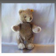 A  Cute Steiff Teddy Bear