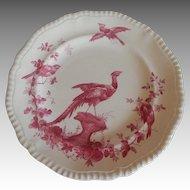 Black Bird Dinner Plate by Copeland Spode