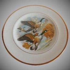 English Bone China Duck Plate