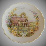 Royal Albert Spring Plate From The Cottage Garden Year Series