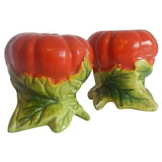 Tomato Salt and Pepper Shakers