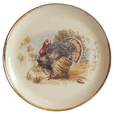 Royal China Ceramic Turkey Plate