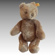 "9"" Steiff Teddy Bear"