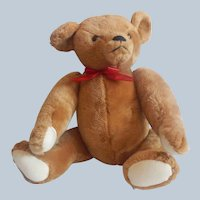 Smithsonian Institution Teddy Bear