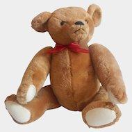 Smithsonian Institution Teddy Bear