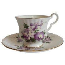Royal Windsor Demitasse  Violets Cup and Saucer
