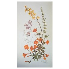 Botanical Wildflowers by Britzke Set of 7
