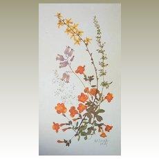 Botanical Wildflowers by Britzke Set of 7