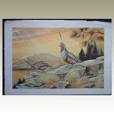 Ruane Manning - Artist -Pair of  Bird Vintage Lithos by Ruane Manning