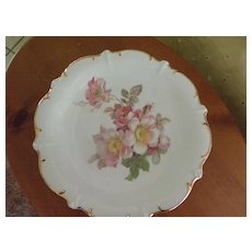 Wildrose China Plate by Schumann-Arzberg Germany