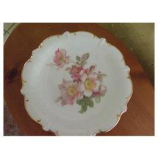 Wildrose China Plate by Schumann-Arzberg Germany
