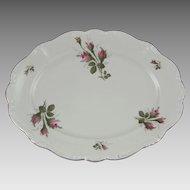 Rosenthal Pompadour Moss Rose Large Oval Porcelain Platter