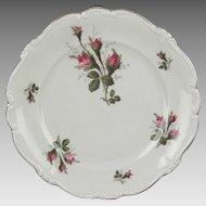 Rosenthal Pompadour Moss Rose 10 inch Dinner Plate