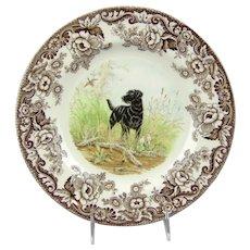 Spode Woodland Hunting Dogs Black Labrador Dinner Plate