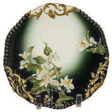 T & V France Tressemann & Vogt French Porcelain Cabinet Plate
