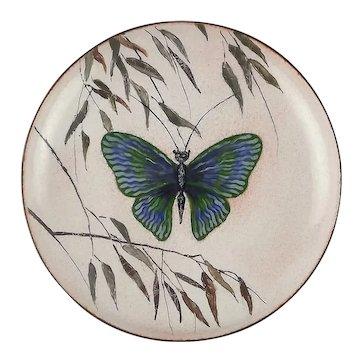 Serge Nekrassoff Enamel on Copper Plate Butterfly in the Willows
