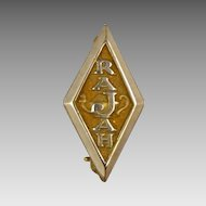 Rajah Temple Masonic Lapel Pin