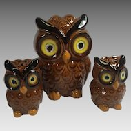Vintage Owl Salt Pepper Shakers Set Napkin Ceramic