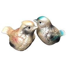 Vintage Bird Salt & Pepper Shakers Shabby Chic Pastel