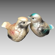 Vintage Bird Salt & Pepper Shakers Shabby Chic Pastel