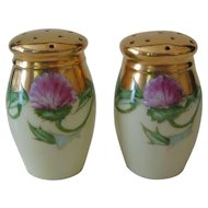 Stouffer Hand Painted Salt Pepper Shaker Set, Thistle Pattern, Artist Signed ESP
