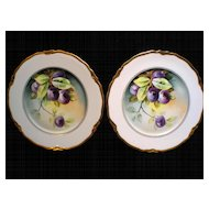 Pair of Handpainted Plum Plates Artist Signed STEVE