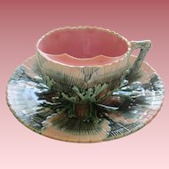 Etruscan Majolica Shell And Seaweed Mustache Cup And Saucer