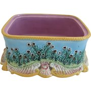 George Jones  Majolica Sardine Base