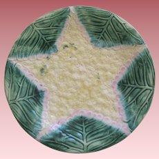 ETruscan Majolica Cauliflower Plate