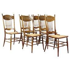 Victorian Set of 6 Antique Pressback Carved Elm & Oak Dining Chairs #31285
