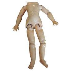 Nice Composition Doll Body Needing German Bisque Head