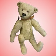 11.5 inch Antique Mohair Teddy Bear - personality PLUS! Excelsior stuffed