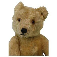 11-5 Inch 1950s Mohair Steiff Teddy Bear Kapok Stuffed very Cute