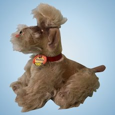 Jointed Mohair Steiff Snobby Poodle with Chest Tag