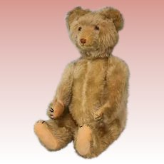 18 inch antique Eduard Cramer, Germany, 1920s musical teddy bear