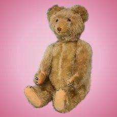 18 inch antique Eduard Cramer, Germany, 1920s musical teddy bear
