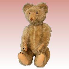 """18"""" Antique German Eduard Cramer Musical Teddy Bear Musical Mechanism Rare Bear!"""