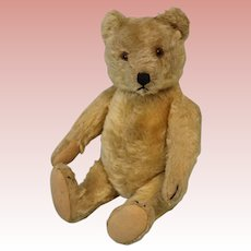 Vintage 11 Inch 1950s Mohair Steiff Teddy Bear Kapok Stuffed very Cute