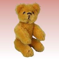 3.5 Inch Schuco Golden Mohair Articulated Teddy Bear Miniature c.1920