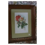 Pair of Antique PAUL DE LONGPRE Chromolithograph Framed Prints of Roses