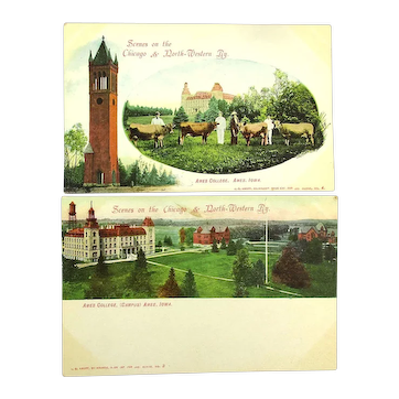 c1905 Chicago & North-Western Railroad Postcard Views Ames College Cows