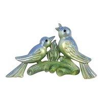 Vintage 1930s Celluloid Pin Brooch - Birds on a Limb