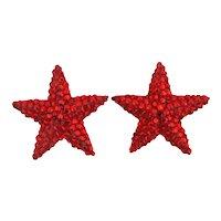 1980s Richard Kerr RED STAR Crystal Earrings Glitz Clips