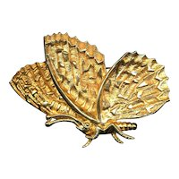 Big DeNicola Butterfly Pin Brooch - Very Textured Very Gilded